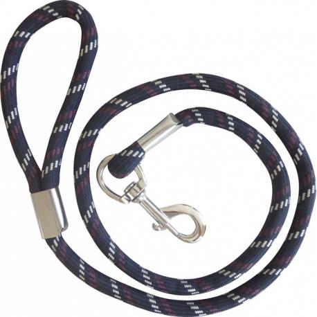 collier pour chien padd