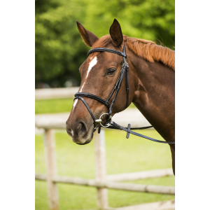 "C.S.O. ""Verni"" bridle, flash noseband"