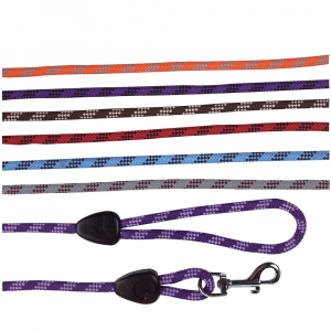 Longe corde avec poignée