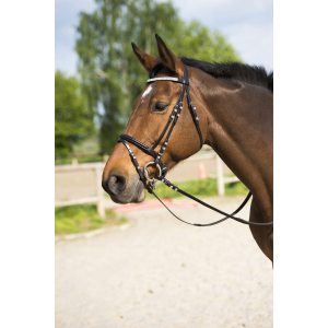 "RIDING WORLD ""Diamond"" bridle with flash noseband"