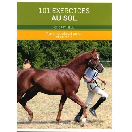 101 exercices au sol