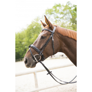 "NORTON LUXE ""Demi-rond"" bridle, flash noseband"