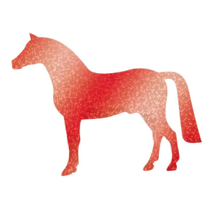 Application hologramme cheval