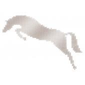 Application métallique cheval