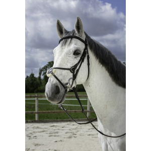Norton Club bridle with grakle noseband