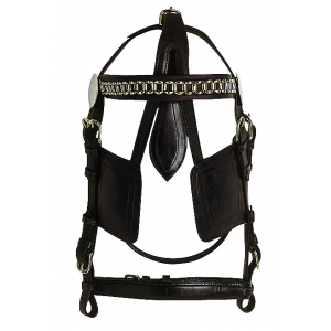 Bridle for harness