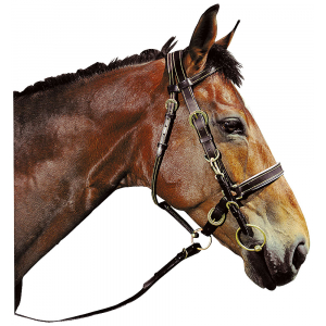 Bridle/headcollar stitched