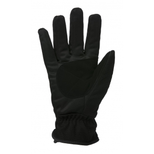 Gloves EQUITHEME Flakes