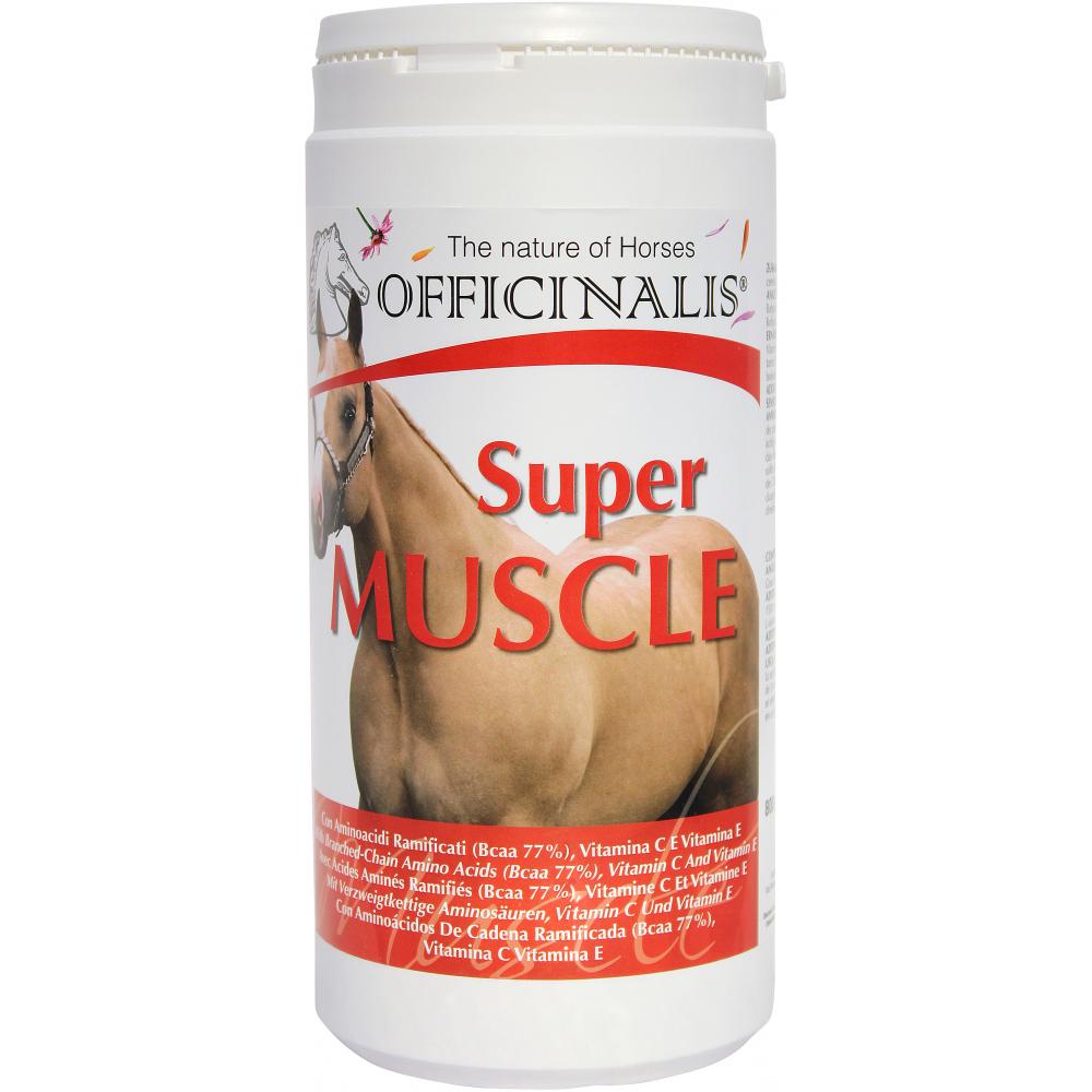 Aliment complémentaire Officinalis super Muscle