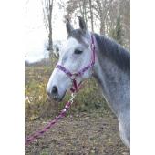 Equi-Kids Pegasus head collar + lead rope