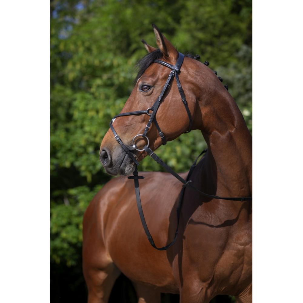 Bridon Riding World muserolle croisée
