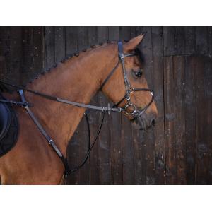 Martingale à anneaux Riding World