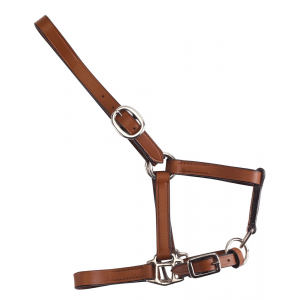 Norton Club Suckling halter...