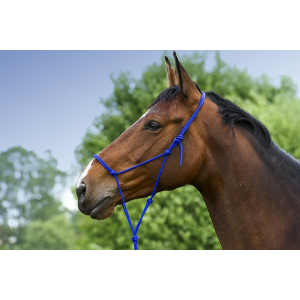 Norton Soft ethological halter