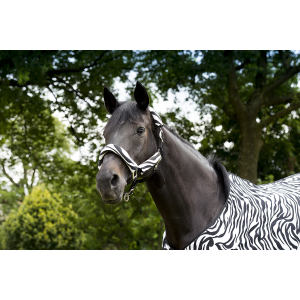 "EQUITHÈME ""Zebra"" headcollar"