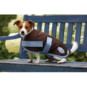 Couverture EQUITHÈME Aircool pour chien