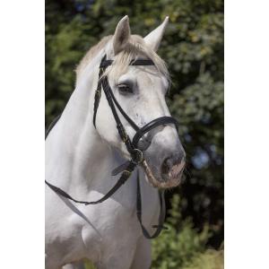 Bridon Norton Club cheval de trait