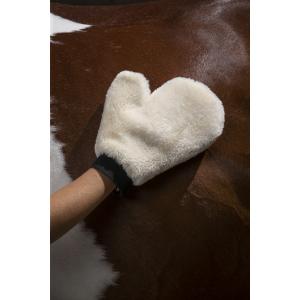 EQUITHÈME Teddy grooming glove