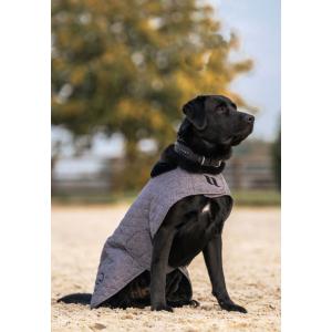 Back on Track® Haze Collection dog coat