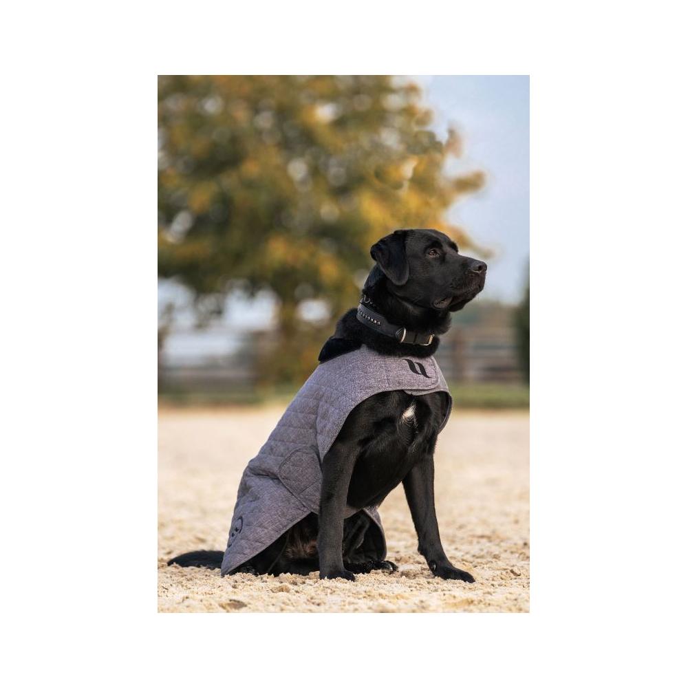 Couverture pour chien Back on Track Haze Collection