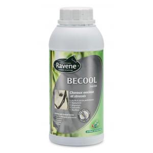 Ravene Becool anti-stress solution