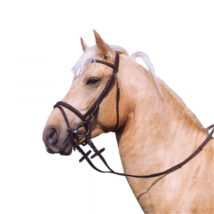 Excelsior bridle, oiled