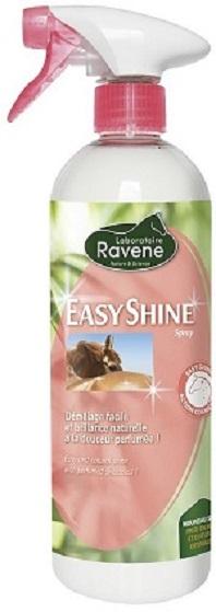Easy shine Ravene
